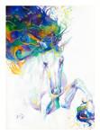 Colourful Encounter