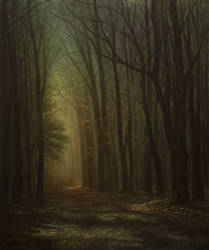 Spare Sunlight in the Forest by MHandt