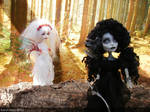 monster high custom blood fairy and shadow elf by Rach-Hells-Dollhaus