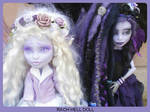 monster high custom Nightmyst and Nightshade fairy