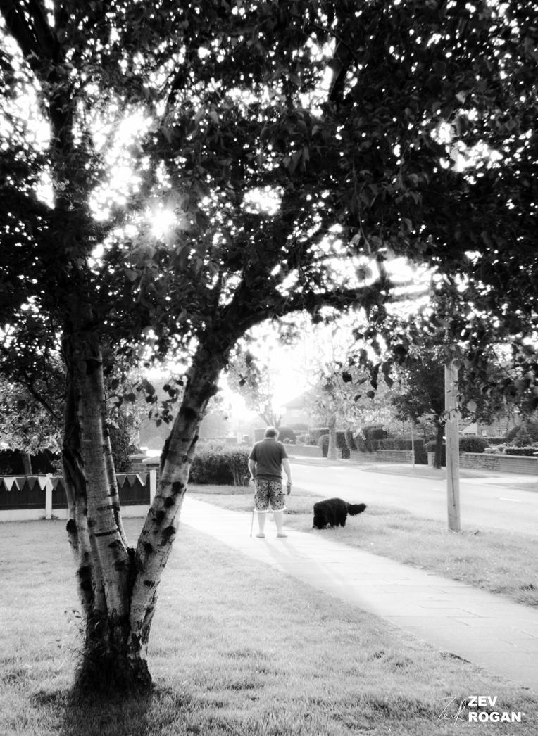 RE-TWEAKED SERIES: Dog Walker by ZEVLEVIROGAN