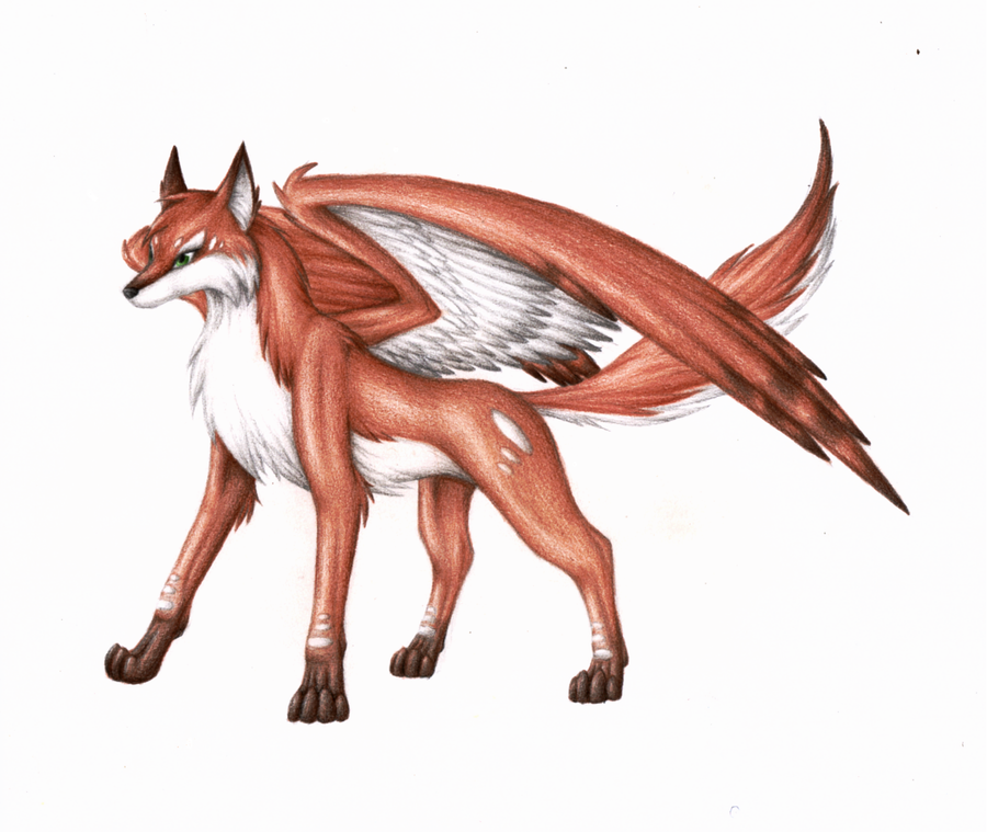 Blizzard[RP APP] Winged_wolf_fox_by_arisah_aris27-d35outp