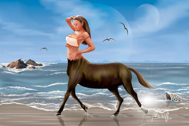 Centaur by DikaWolf