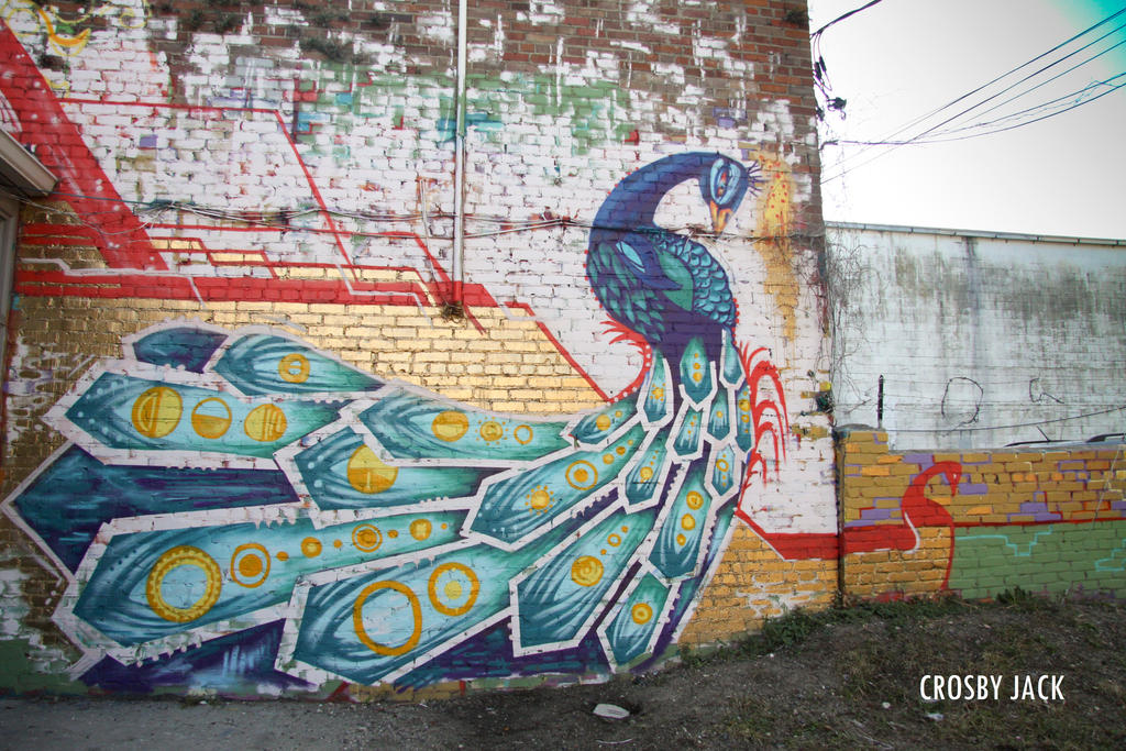 Peacock full wall by MEIZR