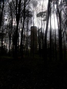 Rehberg Watch Tower