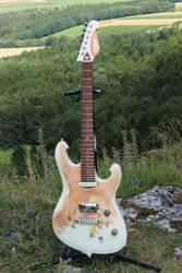 The Hawk Series Guitar by Airbrushman1