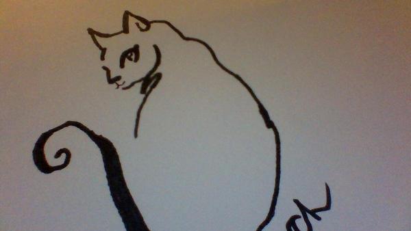 Cat by zemonkey300