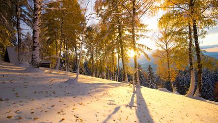 Fall-Winter by mprox