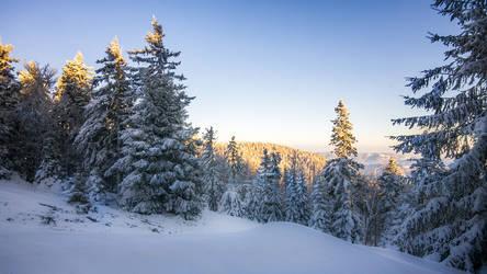 Winter Idyll II by mprox