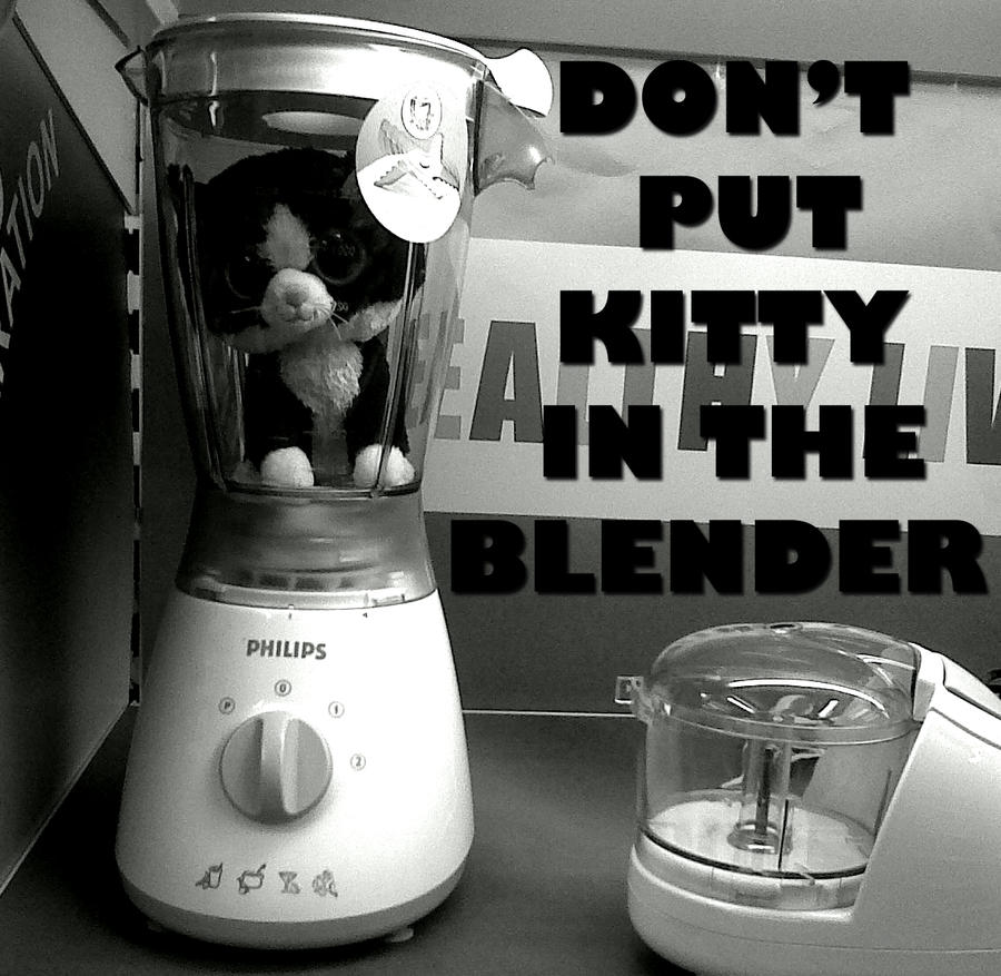 Kitty In A Blender ~ Don t put kitty in the blender by lithium on deviantart