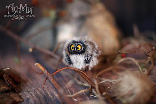 Owl Puhlya