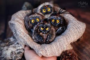Little owlets by WorkshopAyami