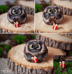 Owlet with a gift by WorkshopAyami