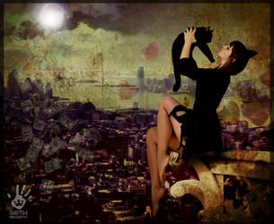 catwoman by seth-macbeth