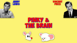 Pinky and The Brain - 1960s Version