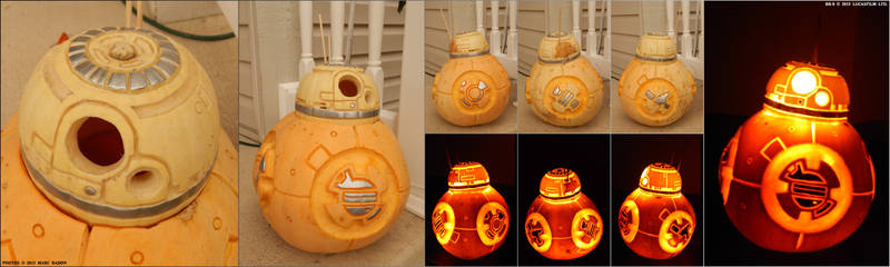 Pumpkin15A