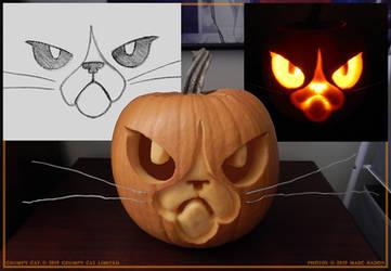 Pumpkin19