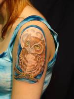Owl by danktat