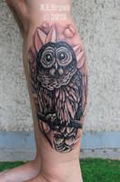 Barred owl tattoo by danktat