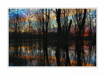 Swamp Sunset by aquapell