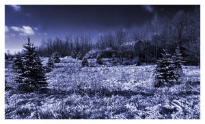 Winter In Saginaw