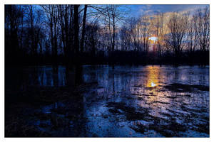 Floodland III by aquapell