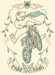 Motocross-Stitch Kitteh by HillaryWhiteRabbit