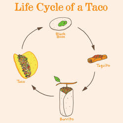 Life Cycle of a Taco by HillaryWhiteRabbit