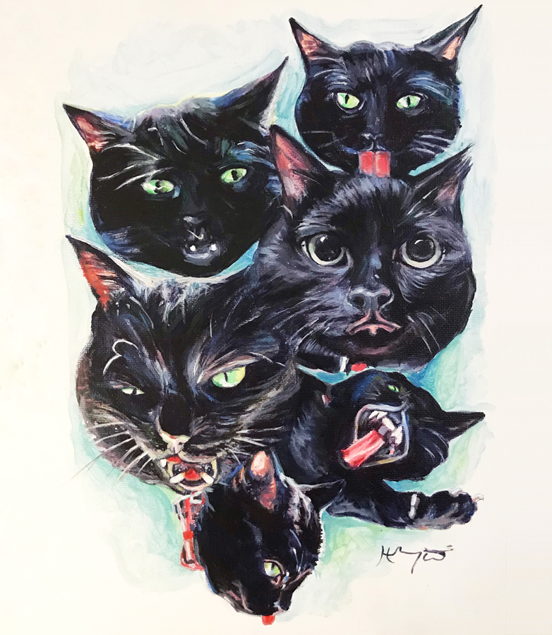 Many Faces of Binx