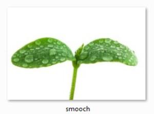 optimallyMonochrome's Profile Picture