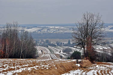 Fields In Winter by Roztocze