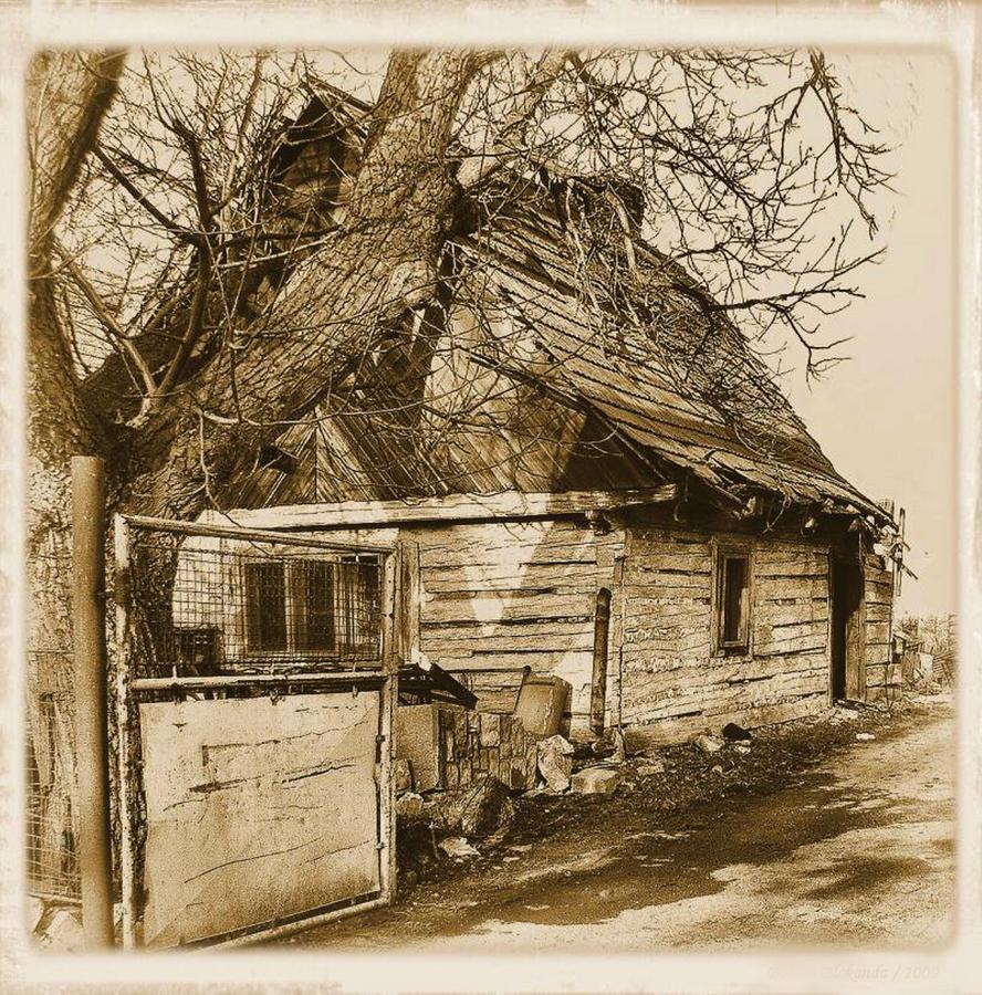 Uncle tom 39 s cabin by svitakovaeva on deviantart for Tom s cabin