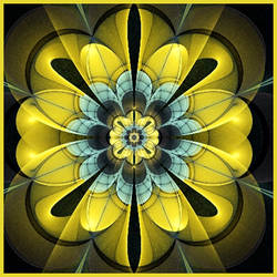 fractal patterns