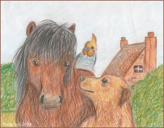 Animals by ThistlePuma