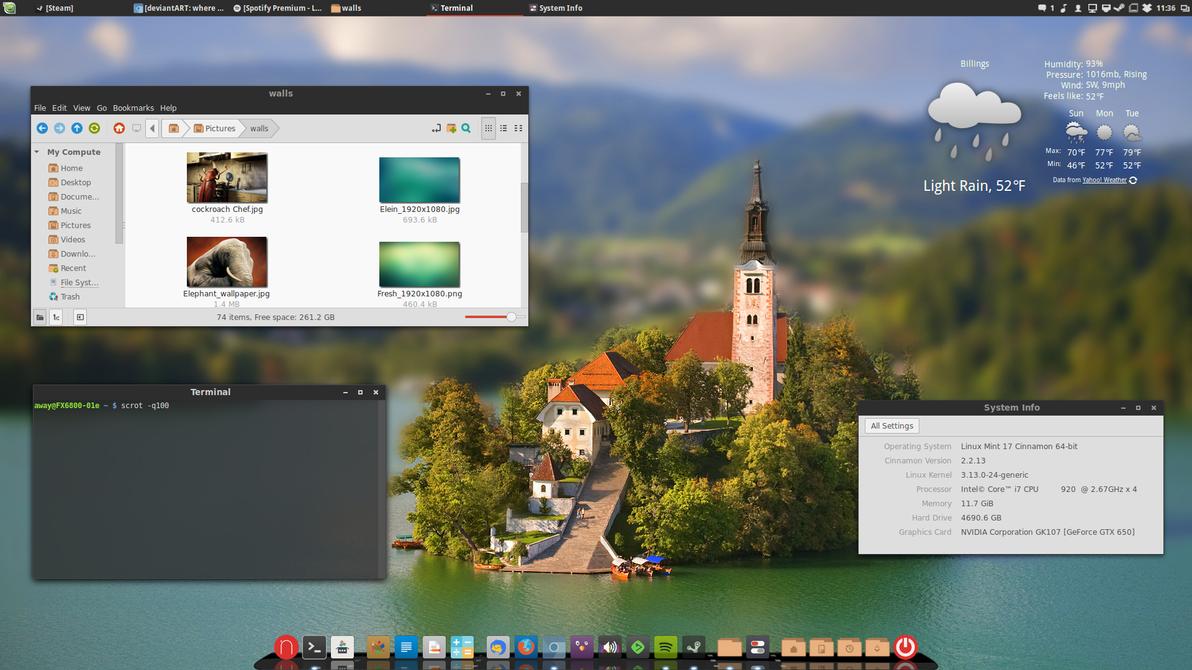 Linux Mint 17 Qiana 2014-06-01 by chriptik