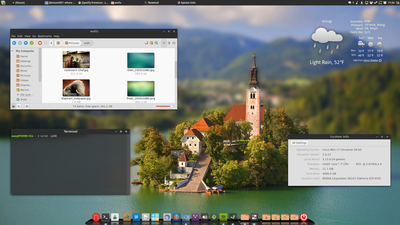 Linux Mint 17 Qiana 2014-06-01 by chriptik