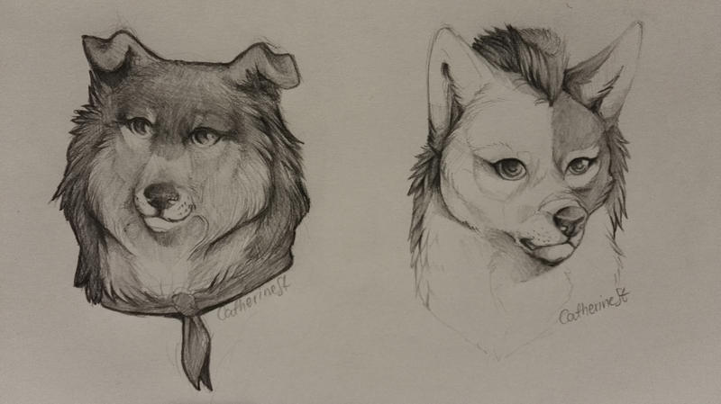 Sketches by CatherineSt