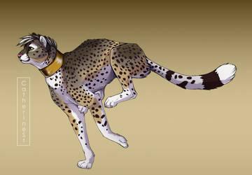 Samuari the cheetah by CatherineSt