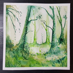 Green Forest  by Albiona