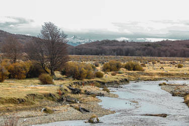 Pipo river