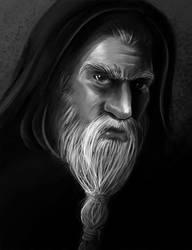Merlin by MarceloKina