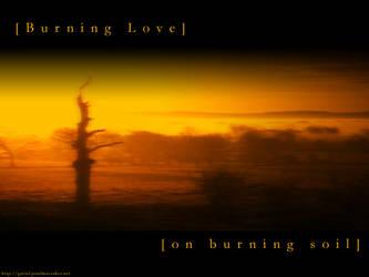Burning Love by gretel