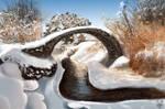 scottisch bridge enviro