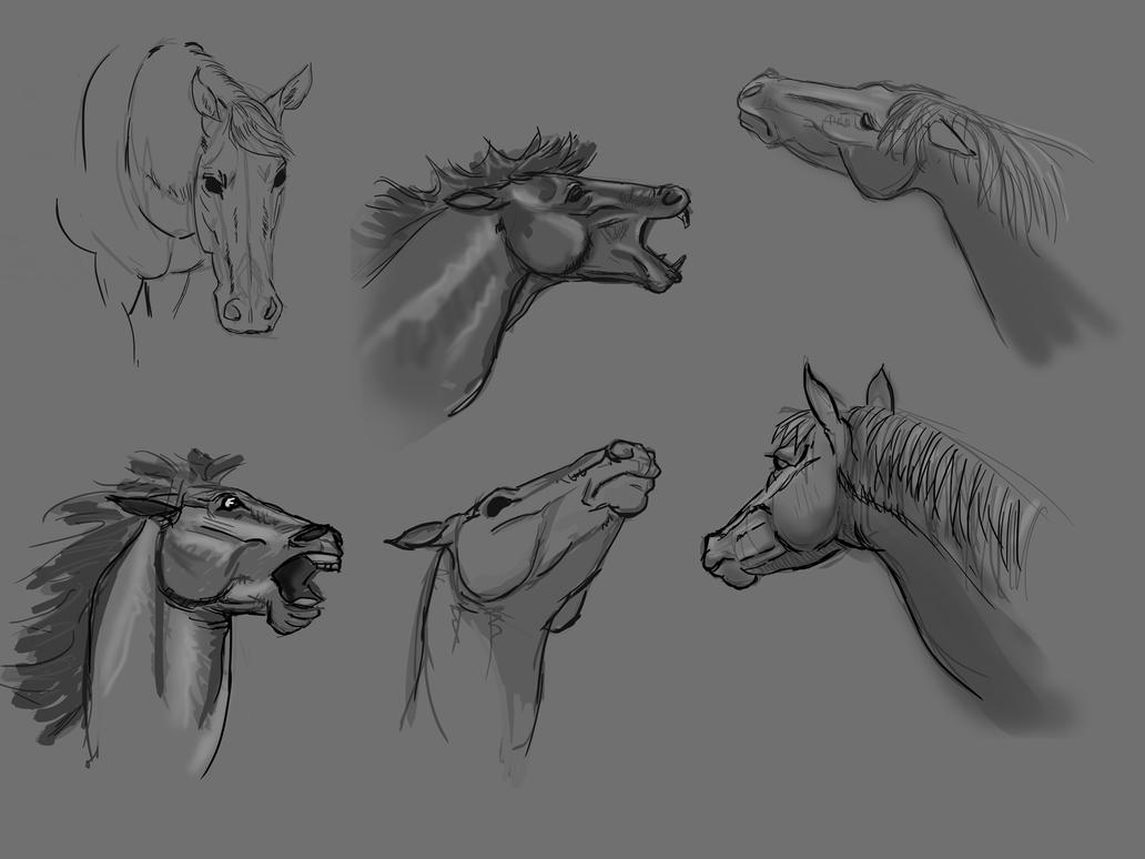 learning to draw horses part 2 by Wolkenfels