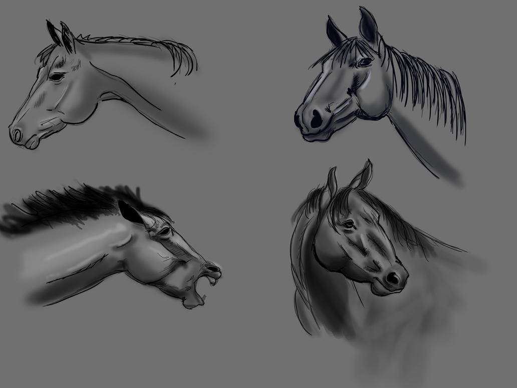 learning to draw horses part 2 studies by Wolkenfels
