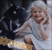 TinySocks's Profile Picture