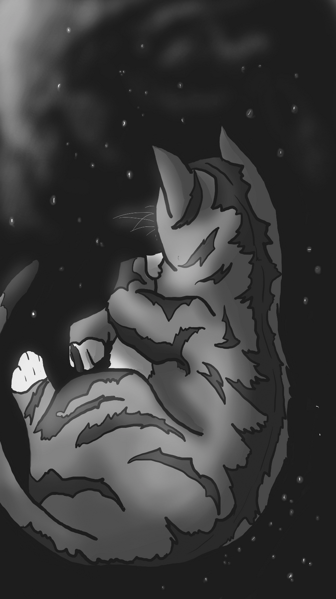Glimpse of Starclan by DragonOfYore