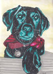 Labrador Puppy - Alcohol markers by Peach1432