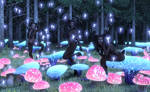 Forest of the Mushrooms