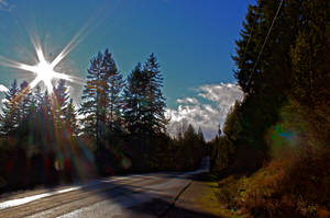 Sunny Road by Mackingster